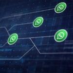 WhatsApp: agora você conversa com empresas sem salvar o número